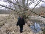 Ins Tal der Kelten Frühlingswanderung 11.03.2012